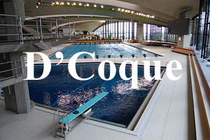 D'Coque 02 (site)