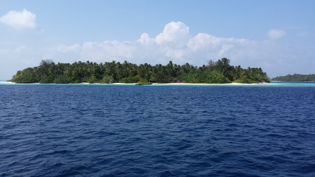 2014.01. Maldives 065
