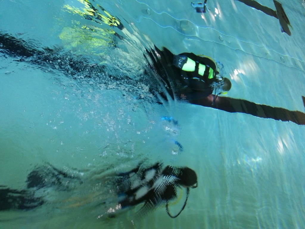 2014.07.23 JUGEND 2014 – Initiation à la plongée